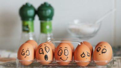 Photo of Cara Membedakan Telur Infertil & Telur Ayam Konsumsi